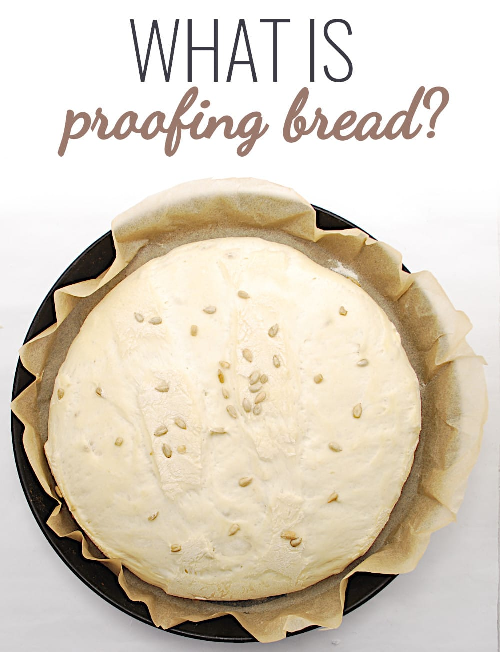 what is proofing bread