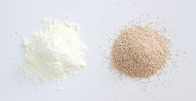 Yeast vs Baking Powder: What Are The Main Differences?